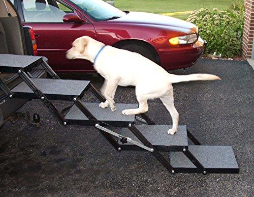 Steps For Dogs To Get Into Car Gatesandsteps Com