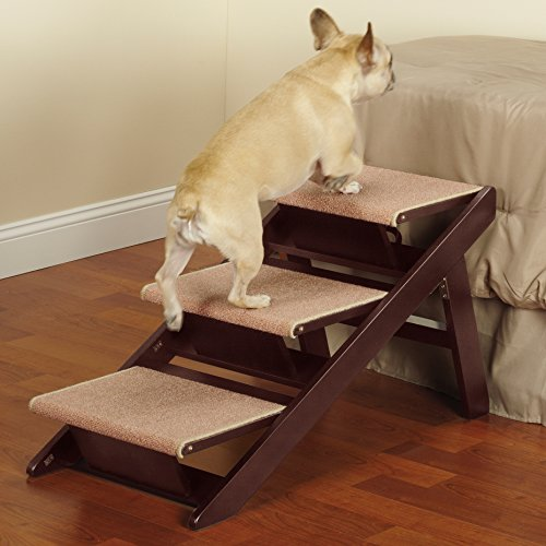 Terrific Step Stools For Dogs Gatesandsteps Com Dailytribune Chair Design For Home Dailytribuneorg