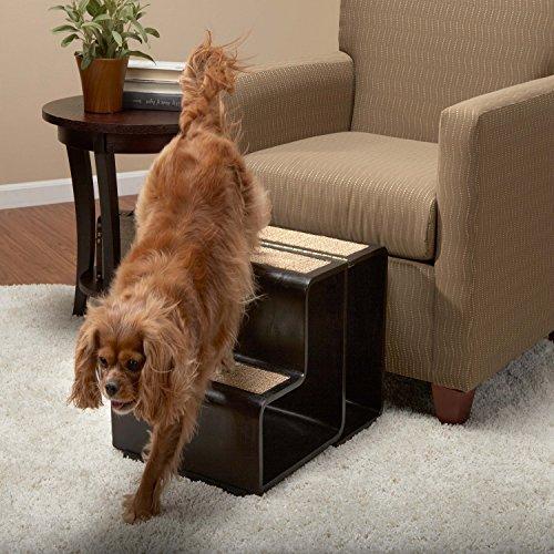 Strange Step Stools For Dogs Gatesandsteps Com Dailytribune Chair Design For Home Dailytribuneorg