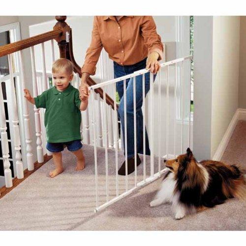 Permanent Pet Gate Gatesandsteps Com