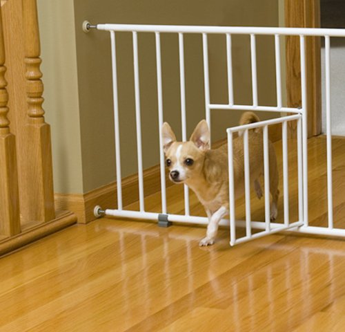 Best Pet Gate For Small Dogs Gatesandsteps