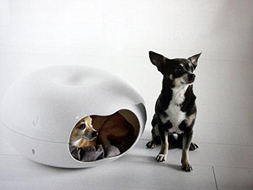 Unique Dog Beds For Small Dogs Gatesandsteps Com